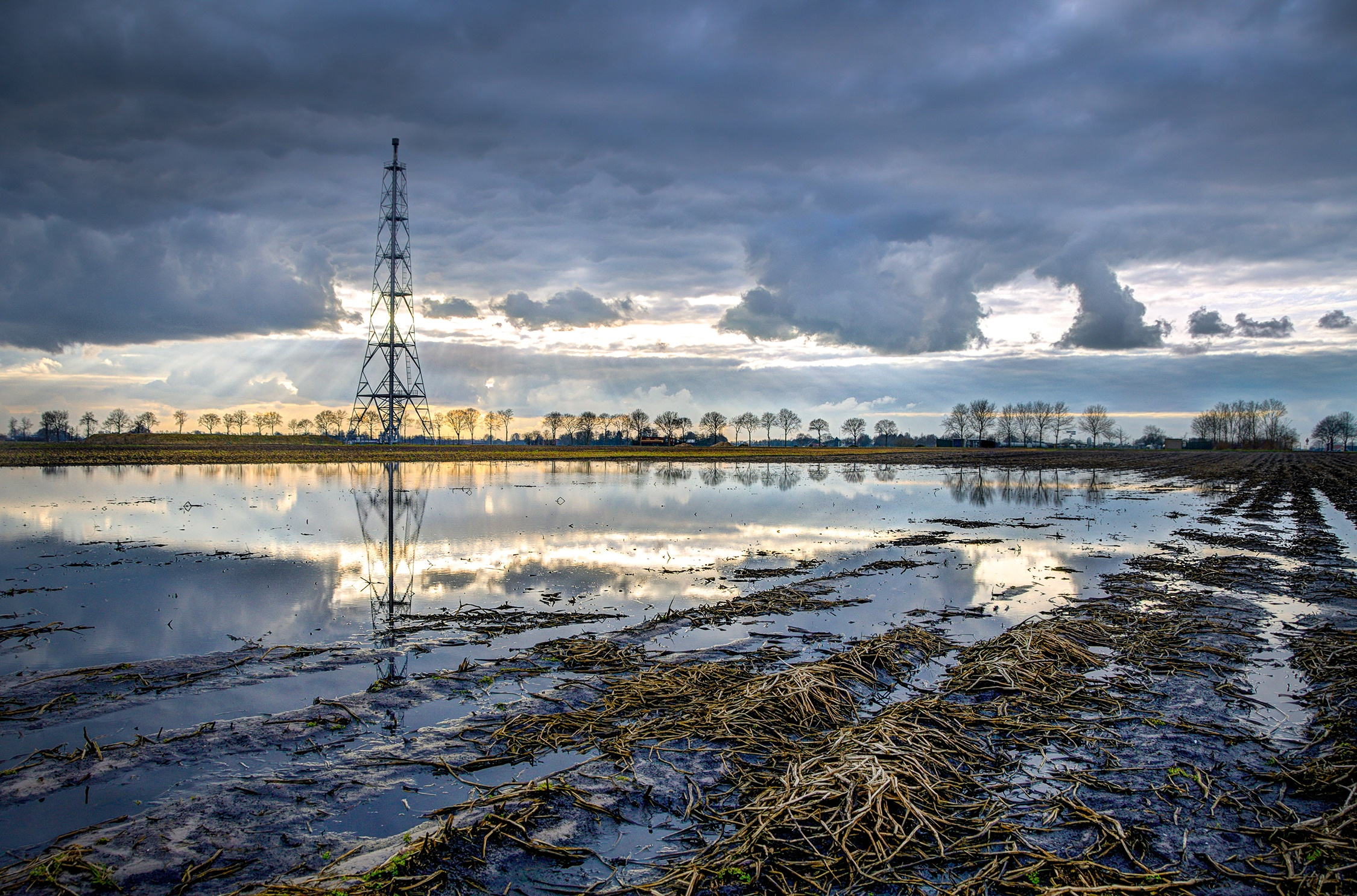 The rise and fall of the Dutch Groningen gas field