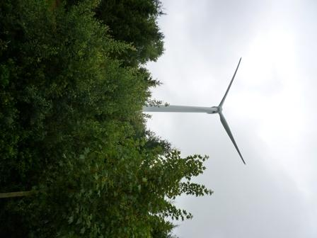Renewable energy: made in Germany
