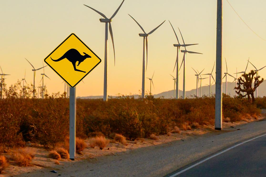 How to survive Australia's energy market bull run